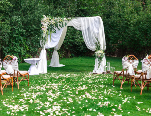 You're in a Wedding – What now?